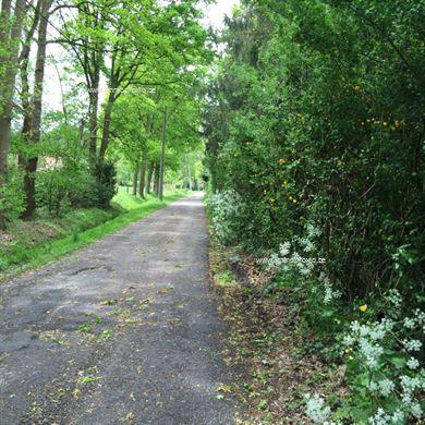 UNIEKE RECREATIEGROND met vijver gelegen temidden van een oase van groen en rust ! Met een straatbreedte van 84 m en een diepte van 45 m is deze gr...