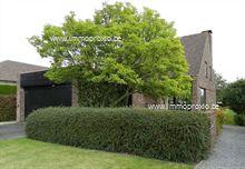 Landelijk gelegen VILLA, bestaande uit : inkomhall met gastentoilet+vestiaire, bureel mogelijk, ruime living 40m², afzonderlijke keuken 14m², ba...