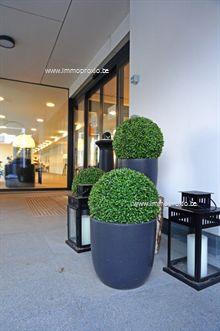 3 Appartementen te huur Tielt (8700), Kortrijkstraat 36 / 207