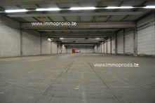 Industrieel in Brugge, Pathoekeweg 11