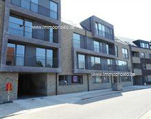 Nieuwbouw Appartement in Geel, Burgstraat 44 / 1