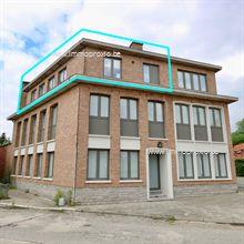Appartement te koop in Waasmunster