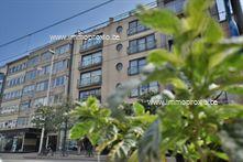 Appartement te huur in Oostduinkerke