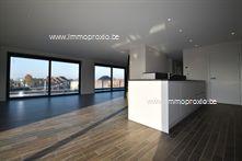 Nieuwbouw Appartement te huur in Menen