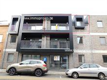 Nieuwbouw Appartement te huur in Ninove