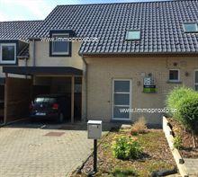 Nieuwbouw Huis te koop in Tiegem