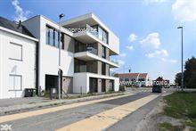 Appartement neufs a louer à Zwijnaarde