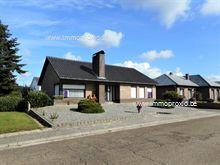 Maison a vendre à Averbode