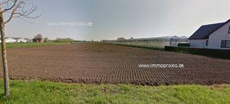 Landbouwgrond te koop in Lochristi