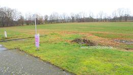 Landbouwgrond te koop in Beverlo