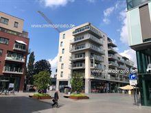Nieuwbouw Appartement te huur in Roeselare